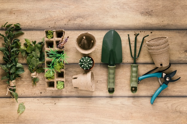 Vista elevada de la planta; rastrillo; showel bandeja de turba; maceta de turba podadora y planta suculenta dispuestas en una fila en la mesa Foto gratis