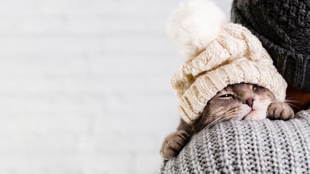 Vista lateral gatito pequeño con gorro de piel Foto gratis
