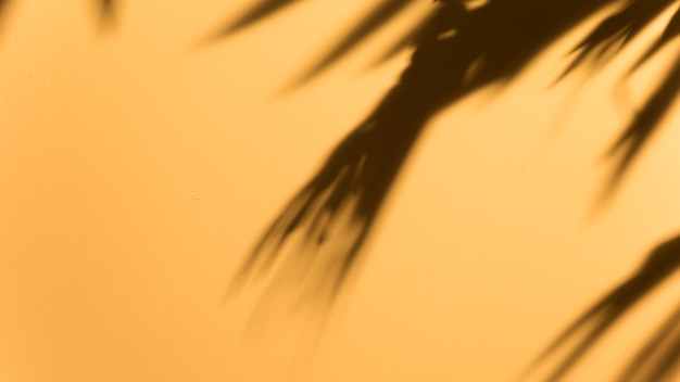 Vista panorámica de la hoja oscura borrosa sobre fondo amarillo Foto gratis