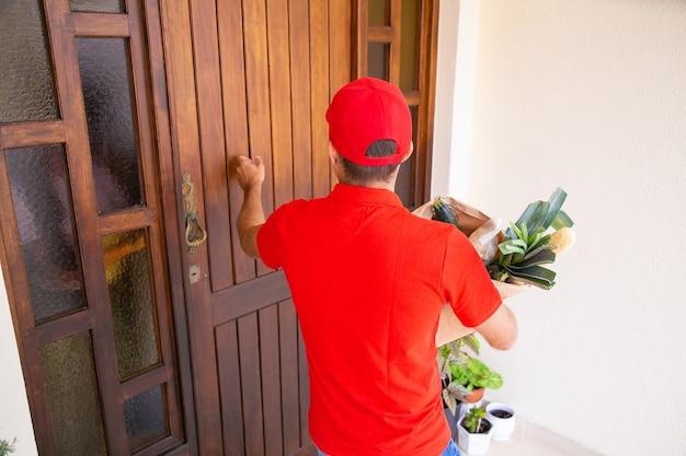 Vista posterior del mensajero llamando a la puerta y sosteniendo verduras en una bolsa de papel. repartidor de sexo masculino en camisa roja entrega de pedido urgente en casa. servicio de entrega de alimentos y concepto de compra online. Foto gratis