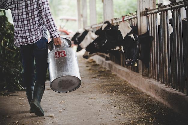Vista de primer plano de las piernas del granjero que trabaja con hierba fresca en el establo de animales Foto gratis