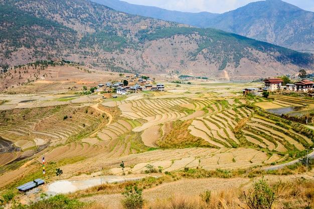 Vista Del Pueblo Y Terrazas De Bhután En Punakha En Bután