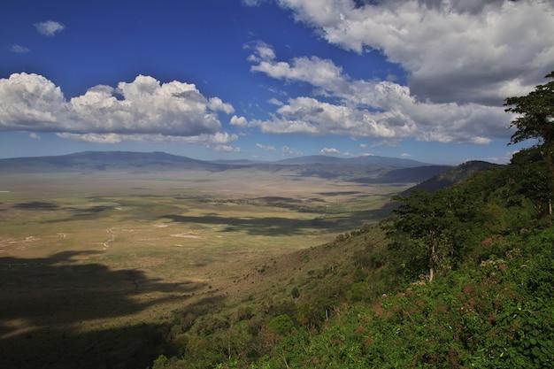 La vista sobre el parque nacional de ngorongoro, tanzania Foto Premium