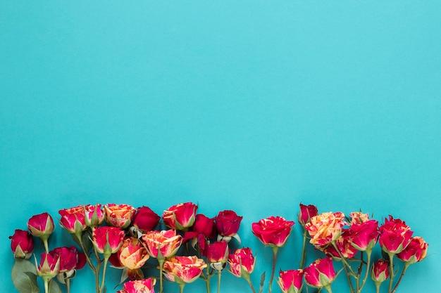 Vista superior del arreglo de flores de clavel con espacio de copia Foto gratis