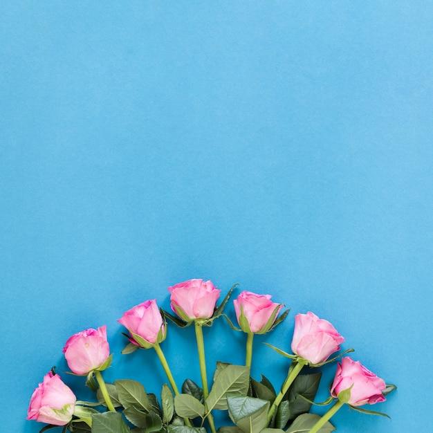 Vista superior del arreglo de rosas rosadas con espacio de copia Foto gratis