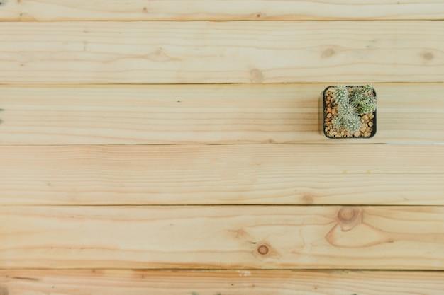 Vista superior de cactus sobre fondo de madera Foto Premium
