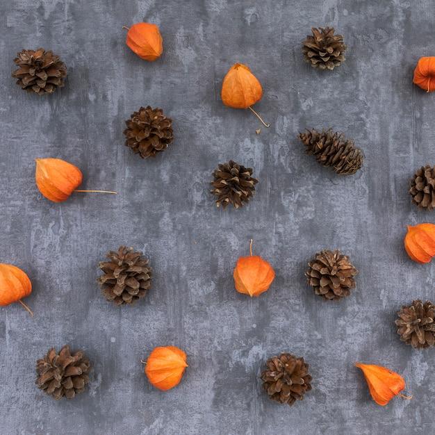 Vista superior del concepto de otoño con piñas Foto gratis