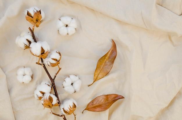 Vista superior decoración de flores de algodón Foto gratis