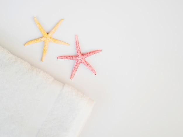 Vista superior estrellas de mar con espacio de copia Foto gratis