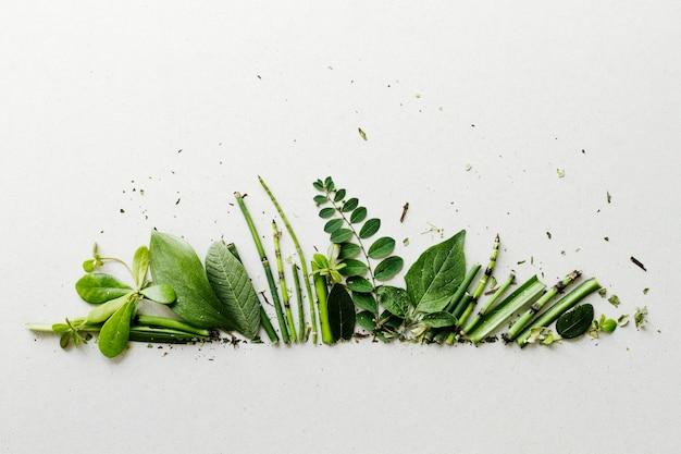 Vista superior fila hojas verdes Foto gratis