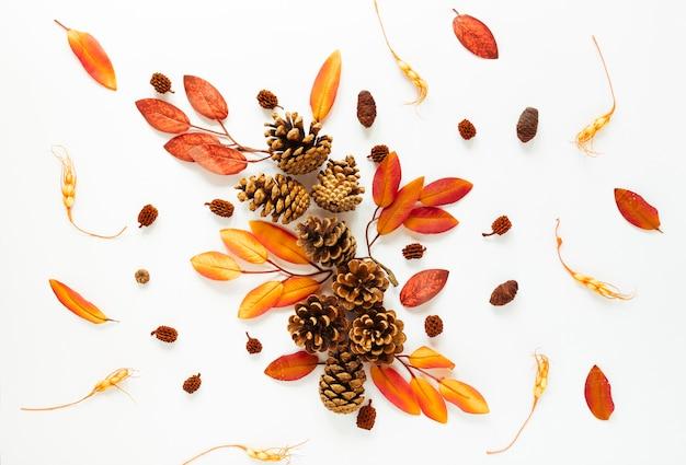 Vista superior de las hojas de otoño sobre fondo blanco Foto gratis