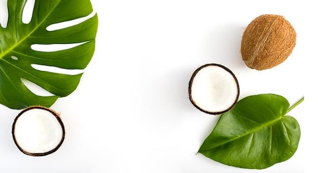 Vista superior de hojas tropicales y coco Foto Premium
