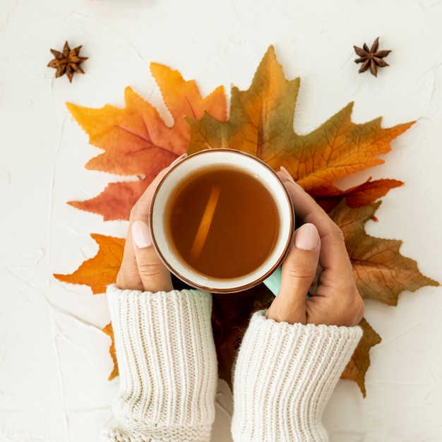 Vista superior mujer sosteniendo una taza de primer plano de té Foto gratis