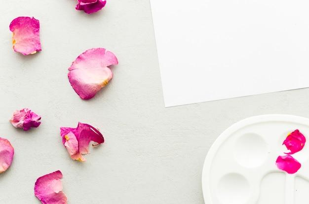Vista superior pétalos con papel y paleta limpia Foto gratis