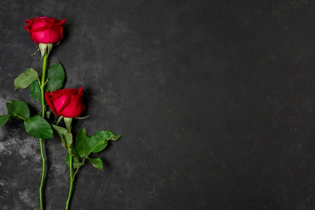 Vista superior ramo de hermosas rosas rojas Foto gratis