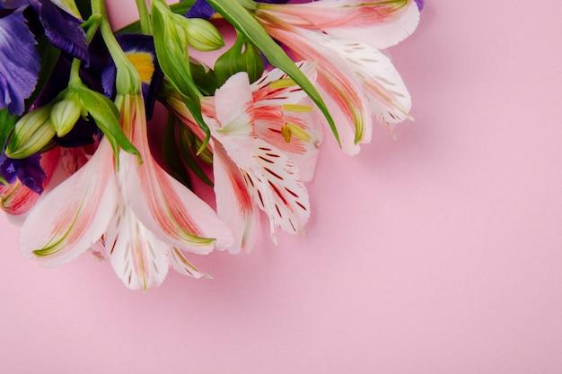 Vista superior de un ramo de iris de color púrpura oscuro y rosa y flores de alstroemeria sobre fondo rosa con espacio de copia Foto gratis