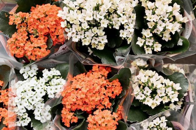 Vista superior de ramos de flores hermosas Foto gratis