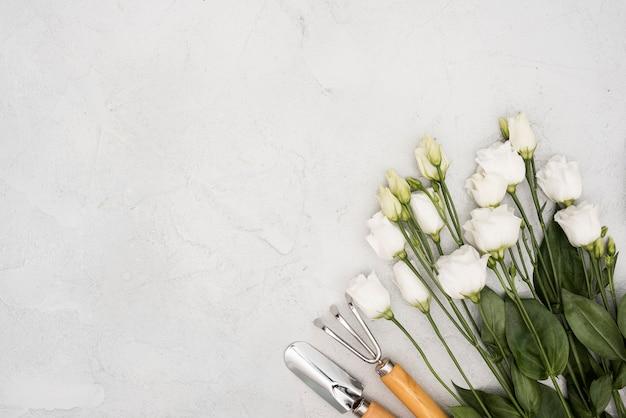 Vista superior de rosas blancas y herramientas de jardinería Foto gratis