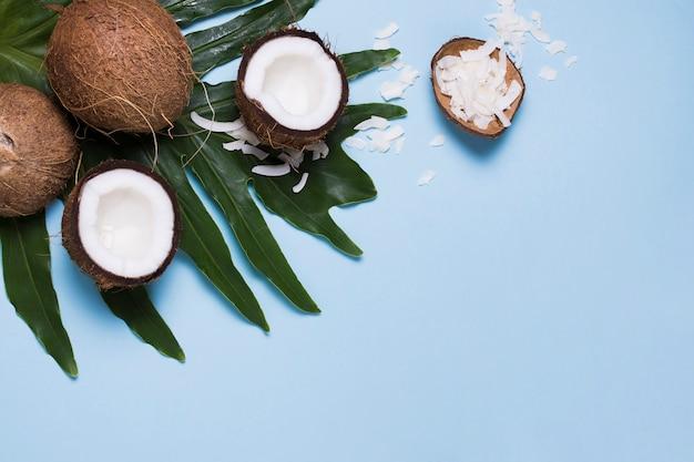 Vista superior selección de sabrosos cocos con espacio de copia Foto Premium
