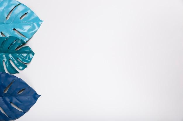 Vista superior tono azul en hojas de papel Foto gratis