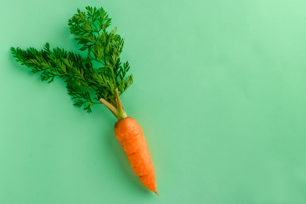 Unas Zanahorias Frescas Foto Premium El pan de zanahoria es una receta ideal para conseguir incorporar verduras y sabor a un elemento convencional. https www freepik es fotos premium zanahorias frescas 7479378 htm