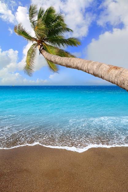 Acqua tropicale della spiaggia di sabbia marrone delle isole canarie Foto Premium