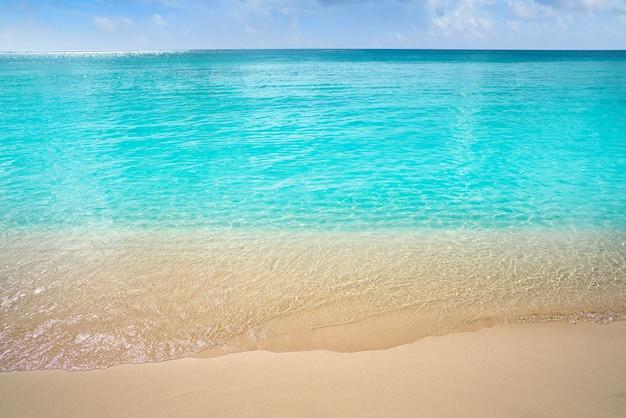 Acque pulite della spiaggia turchese caraibica Foto Premium