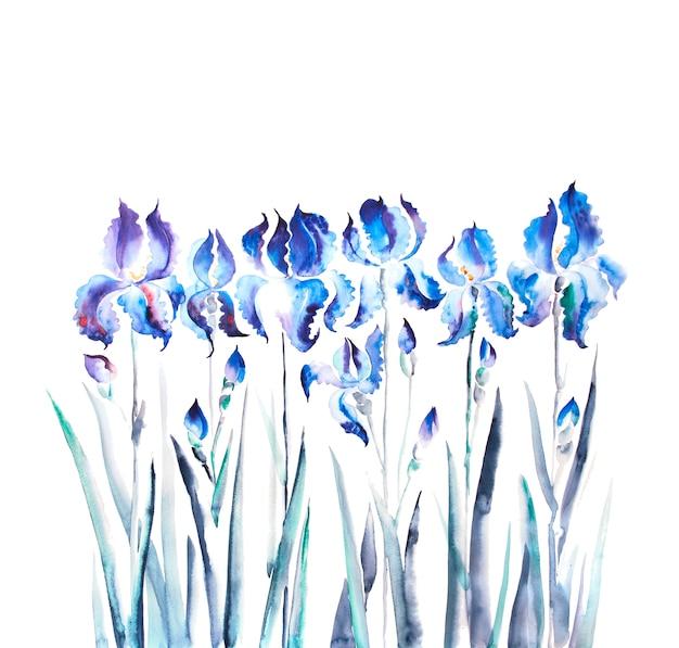 Acquerello isolato del fiore dell'iride Foto Premium