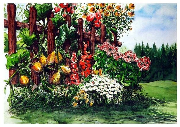 Acquerello pittura di giardino estivo fiori scaricare foto gratis - Fiori di giardino foto ...