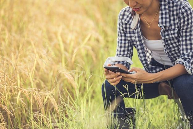 Agricoltore nel campo di riso con smartphone Foto Gratuite