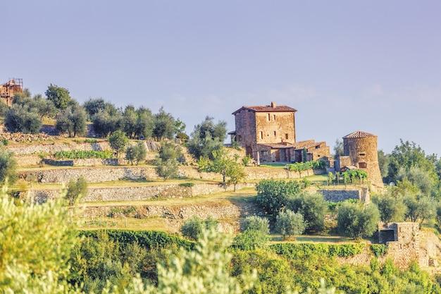 Agricoltura vicino a montalcino Foto Premium
