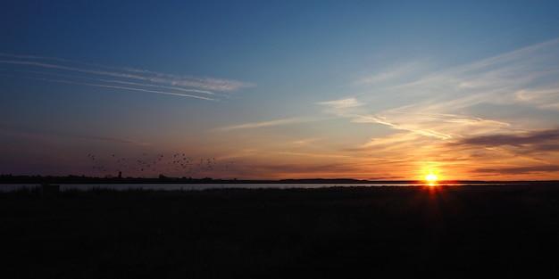 Alba sul lago in estate. raggi di sole, sagome di uccelli in volo e belle nuvole. Foto Premium