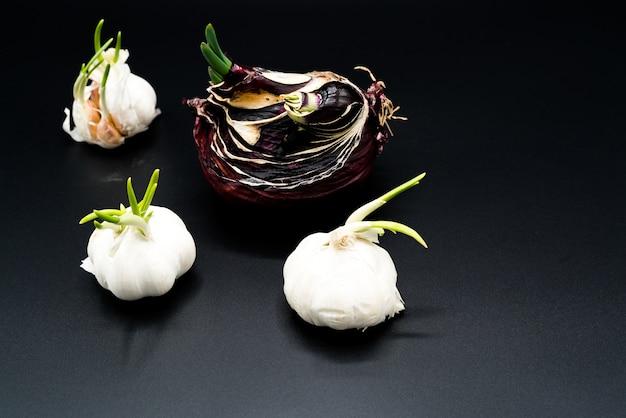 Alberello di aglio e cipolla scalogno cresce come nuova vita, agricoltura biologica Foto Premium