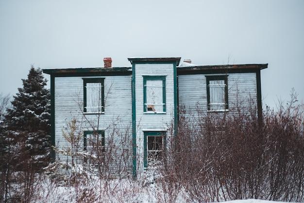 Alberi nudi accanto alla casa bianca durante il giorno Foto Gratuite