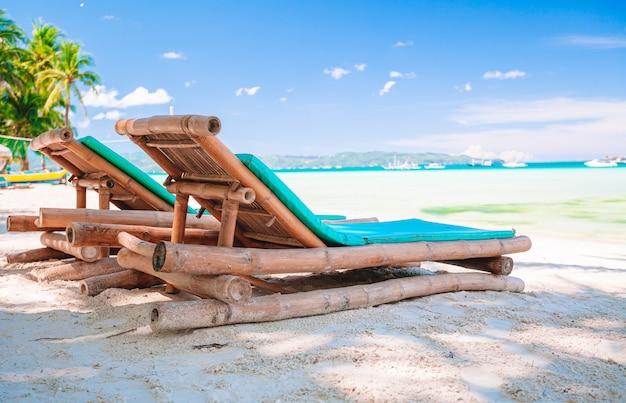 Albero del cocco sulla spiaggia sabbiosa Foto Premium