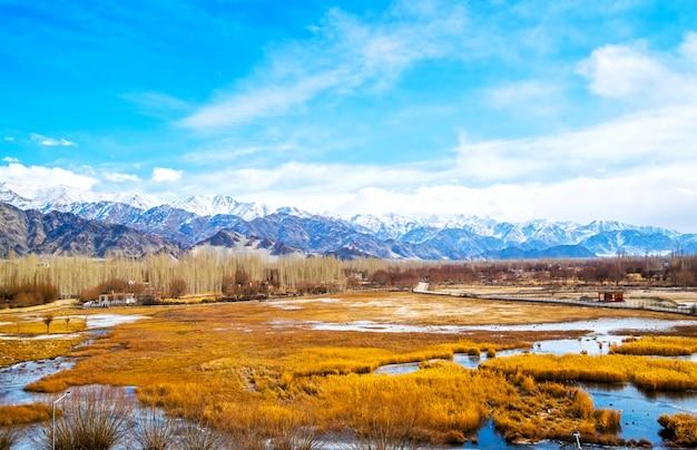 Albero e foresta marroni, mountain view della neve leh e congelati sui fiumi a leh ladakh in india, poca terra del tibet Foto Premium
