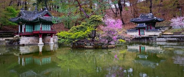 All'inizio della primavera allo stagno di buyongji, nei giardini del palazzo changdeokgung Foto Gratuite