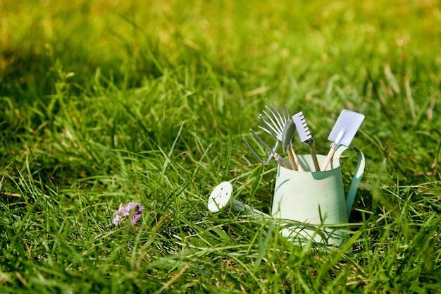 Annaffiatoio e strumenti di giardino su erba di estate Foto Premium