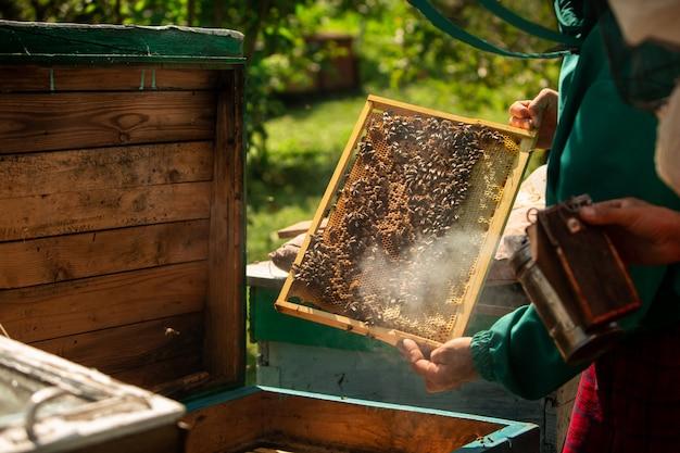 Apicoltore raccolta miele Foto Premium