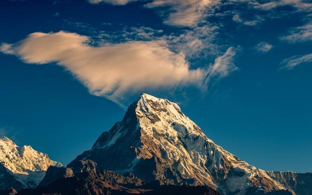 Appanni il ghepardo sopra il monte annapurna a sud da poonhill, nepal. Foto Premium
