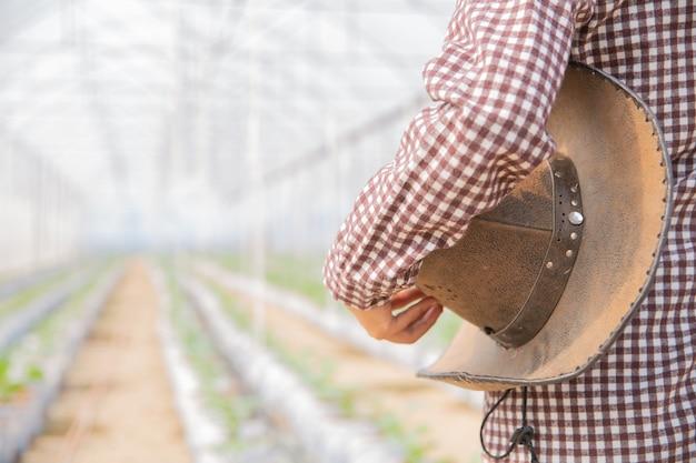 Assistente scientifico donna, funzionario agricolo. nel melone di ricerca in serra Foto Gratuite