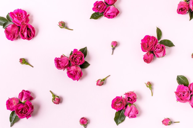 Assortimento di close-up di petali di rosa Foto Gratuite