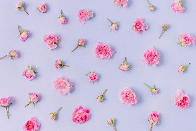 Assortimento di close-up di rose concetto Foto Gratuite