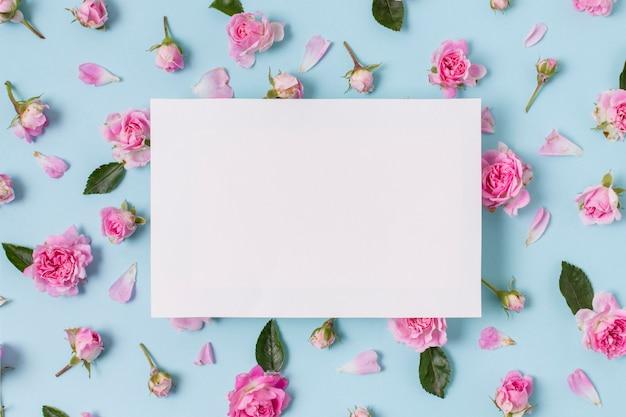 Assortimento di rose rosa concetto Foto Gratuite
