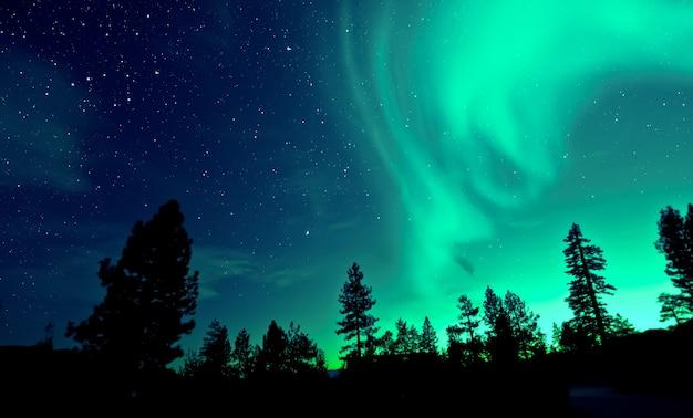 Aurora boreale aurora boreale sopra gli alberi Foto Premium