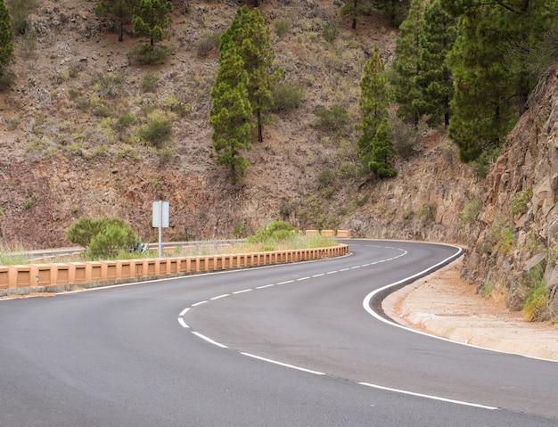 Autostrada circondata da alberi di pino Foto Gratuite