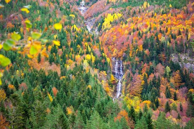 Autunno bujaruelo ordesa waterfal nella foresta variopinta huesca di caduta Foto Premium