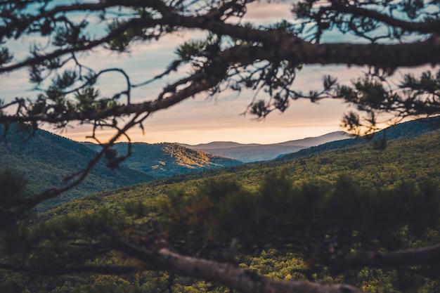 Autunno freddo mattino alba nelle montagne sopra la valle nuvole galleggianti Foto Premium