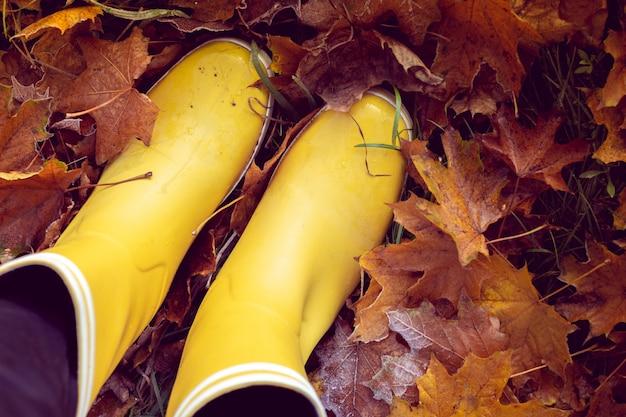 Autunno natura morta con stivali di gomma gialla Foto Premium