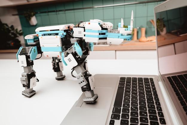 Avvicinamento. un robot rinoceronte si trova sul tavolo della cucina. Foto Premium